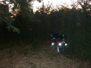My campsite last night - a dark corner - kidneys still in tact