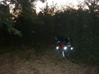 My campsite last night - a dark corner - kidneys still in tact
