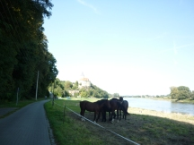 The Elbe Route