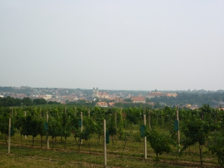 Brno from a distance - little did I know just how much longer it would take to actually GET THERE!!!