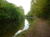 Bit blurry but path leading to final stop in Epinal