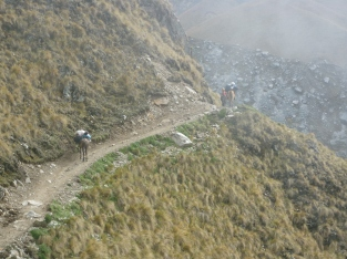 on Salkantay Trek