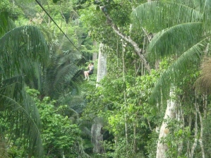 Ziplining in the amazon